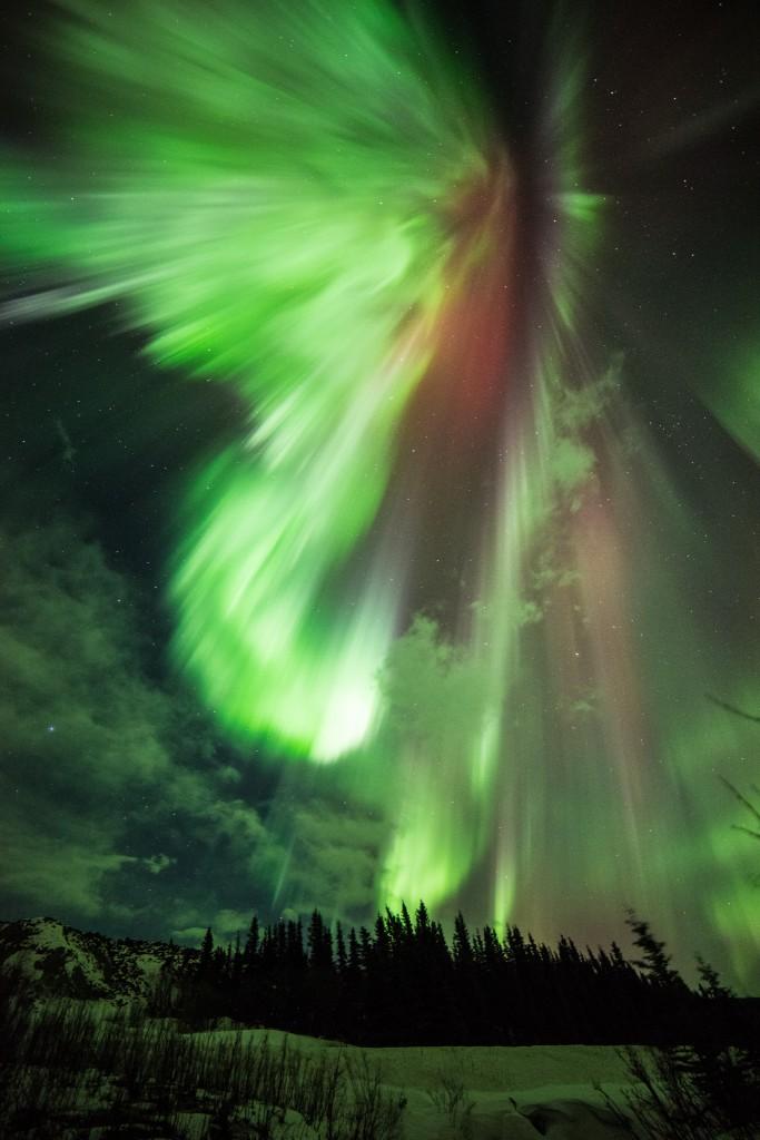 St-Patricks-Aurora-683x1024